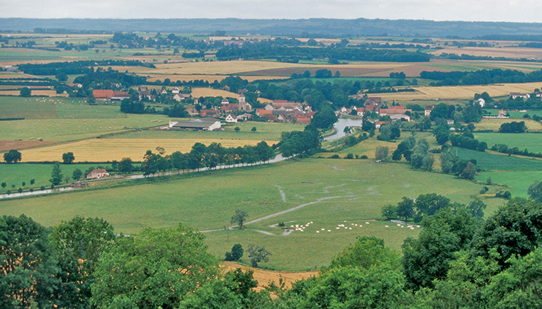 Bbui-burgundy-biking-12